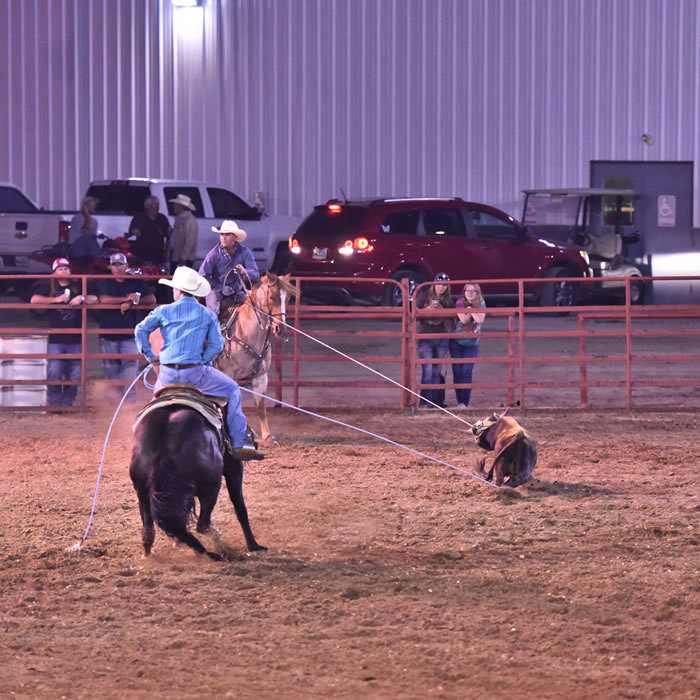 Carbon County Dog Trials